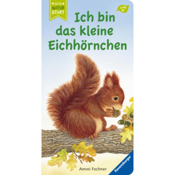 Ich bin das kleine Eichhörnchen