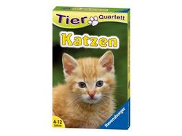 Tier Quartett: Katzen  Kartenspiel